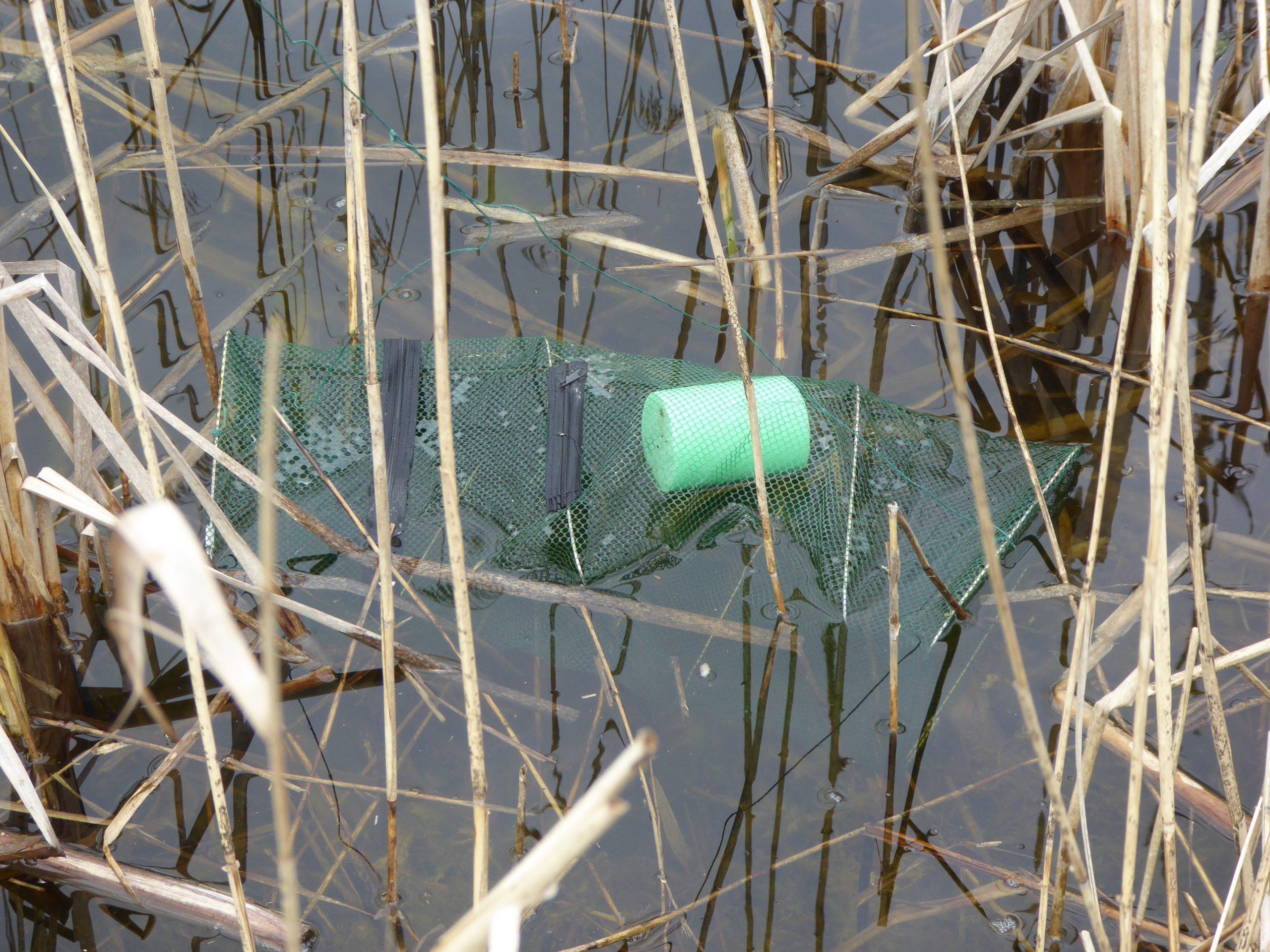 Kleinfischreuse für Amphibien