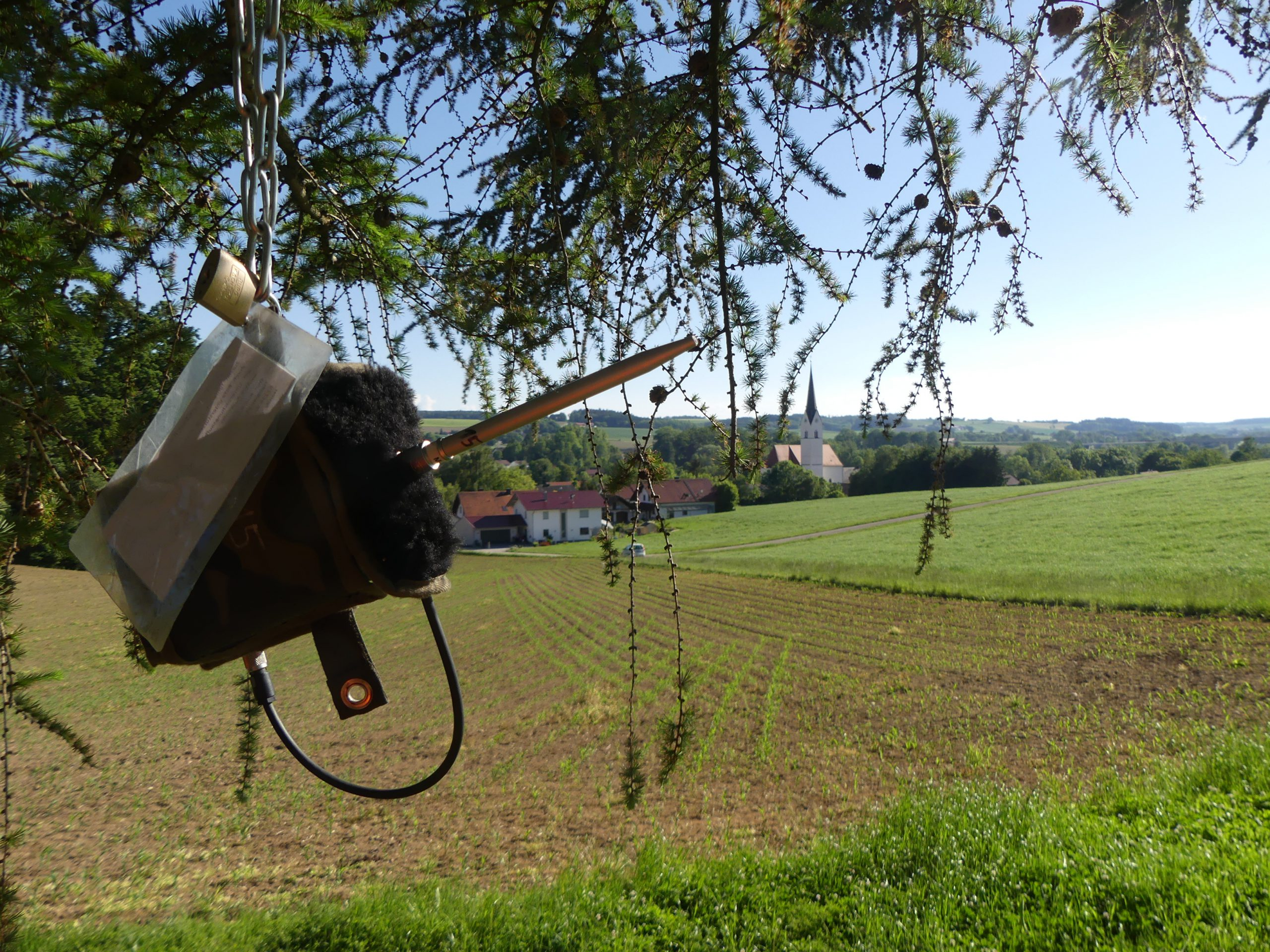 Batcorder Fledermausuntersuchung Bayern