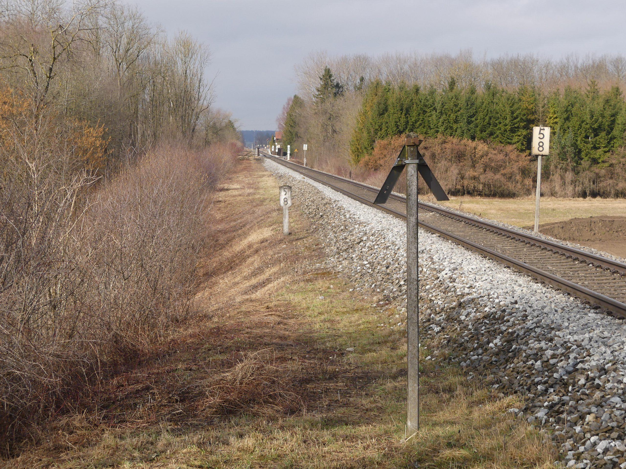Bahn Reptilienabfang