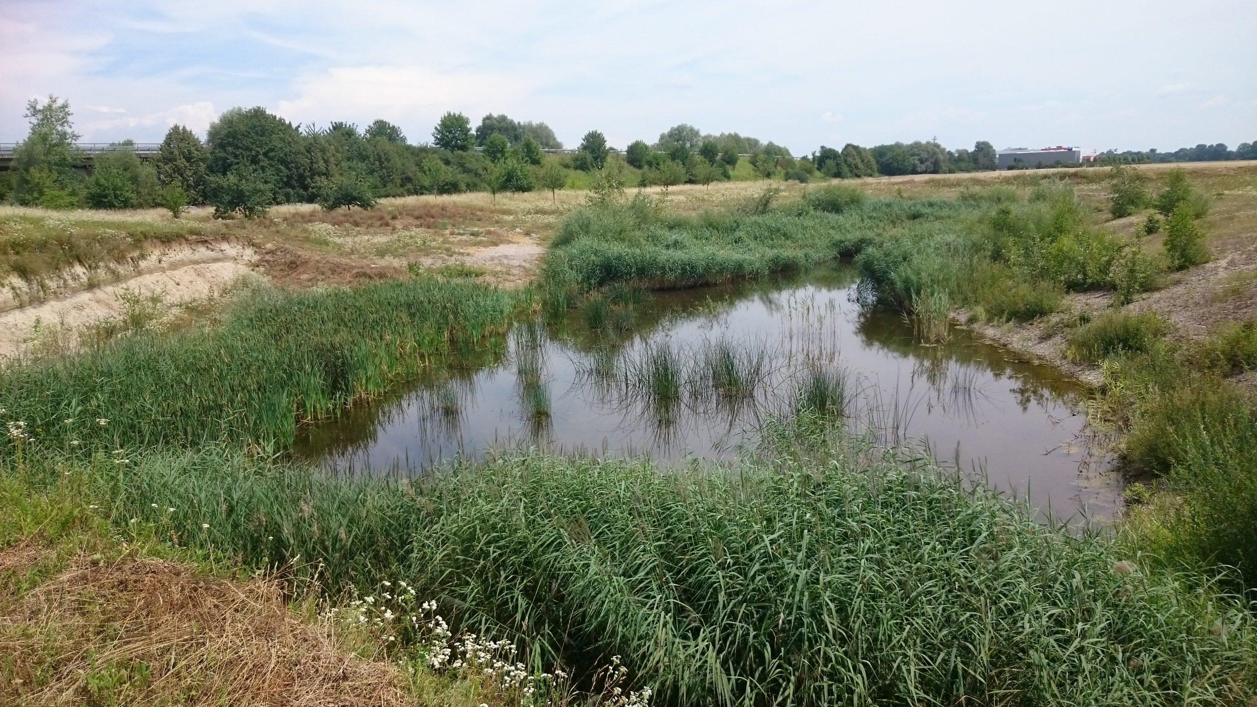 Amphibiengewässer Erfassung Südbayern