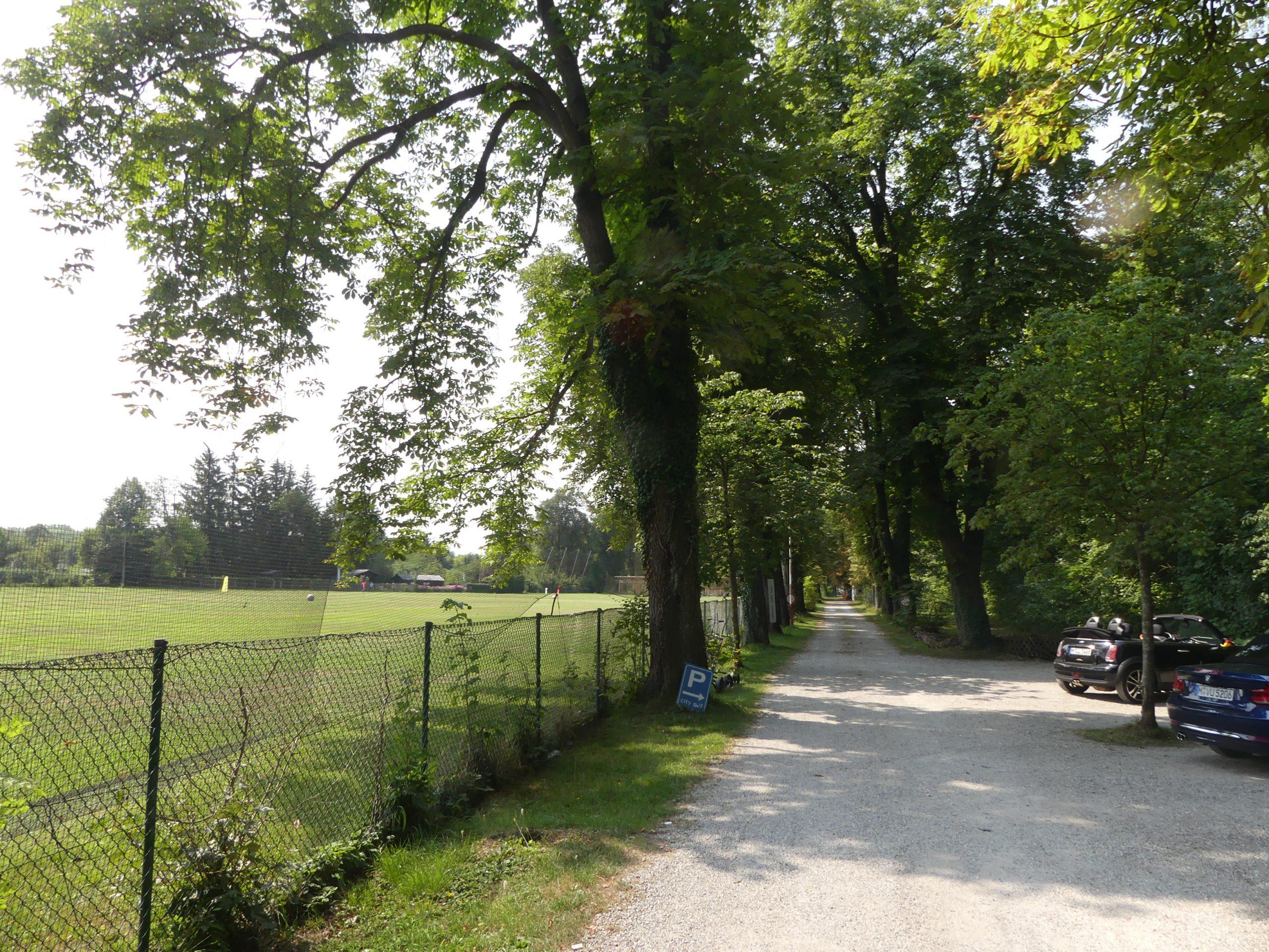 Fledermauskartierung Siedlungsbereich München