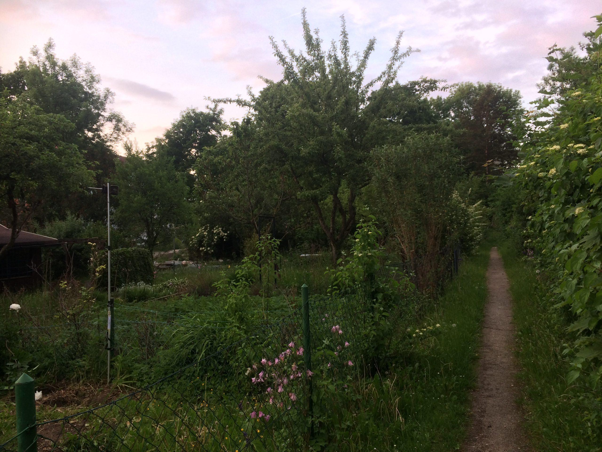 faunistische Kartierung Kleingartenanlage München