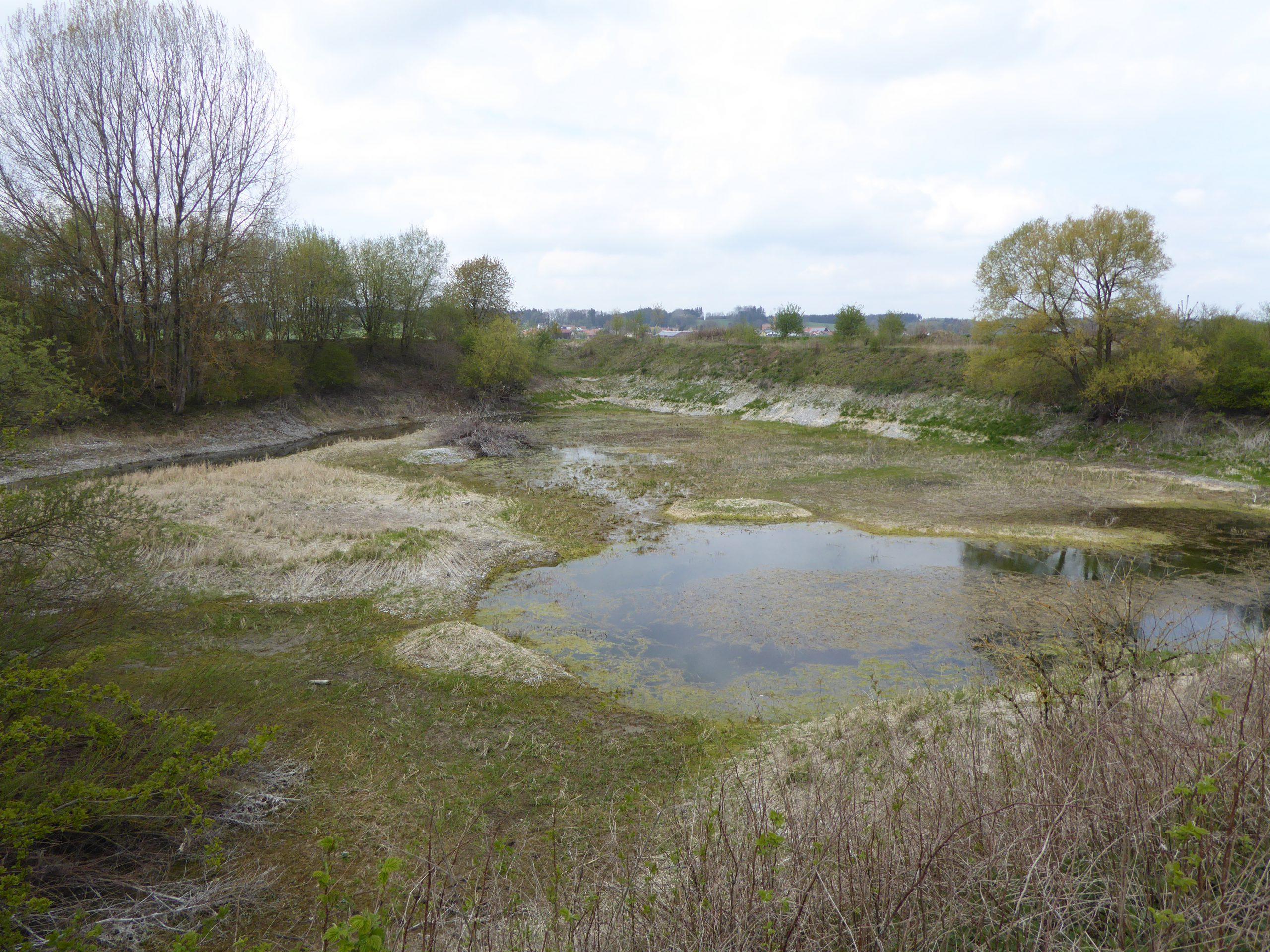 Amphibiengewässer FFH-Kartierung Bayern