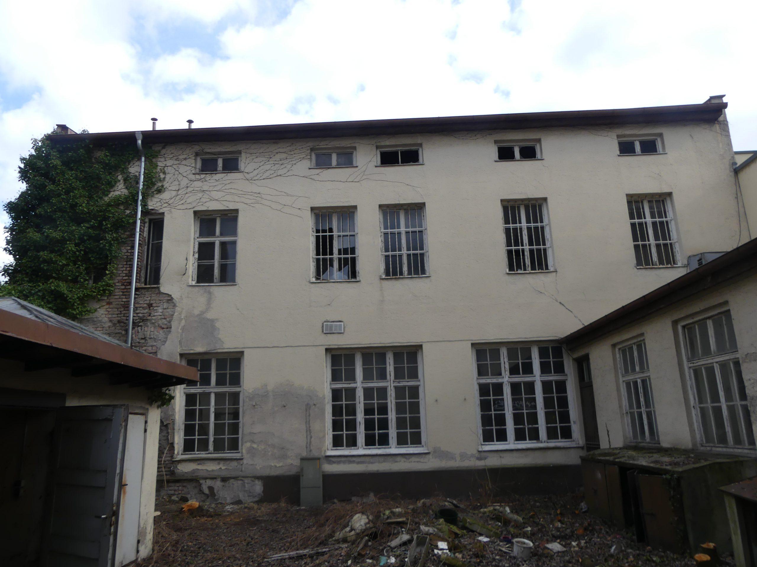Gebäudekontrolle Fledermäuse München