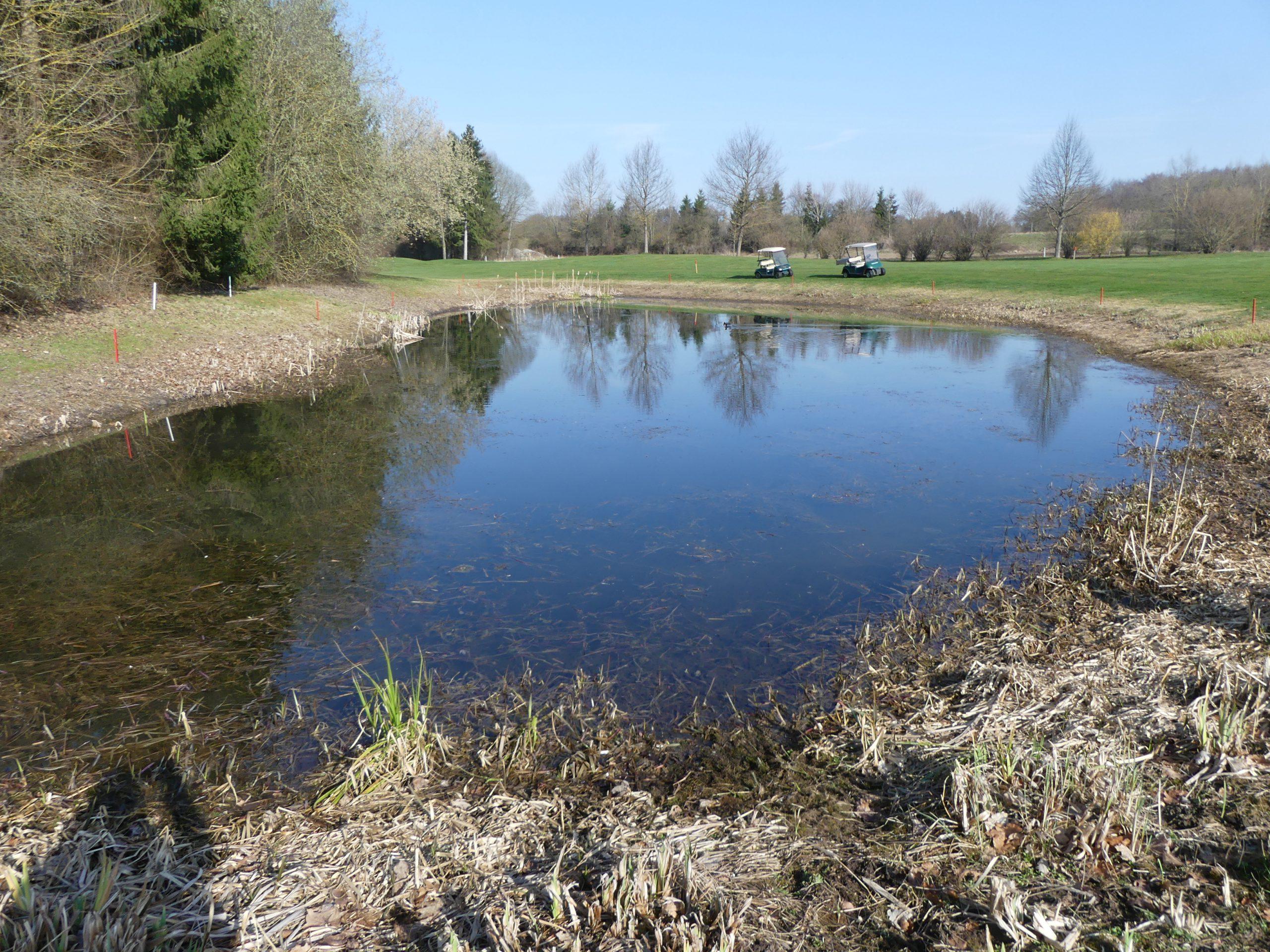 Amphibiengewässer am Golfplatz